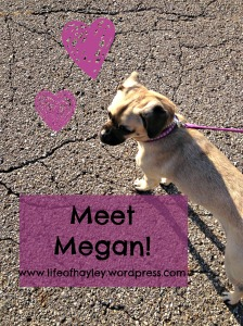 meetmegan