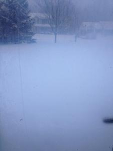 View from my front door....