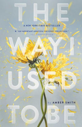 Book Review - The Way I Used To Be by Amber Smith